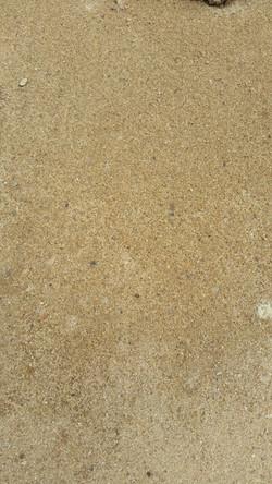 Bredbo fine sand