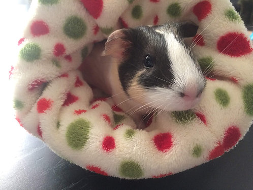 small pet cuddle pouch