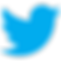 Twitter_icon-icons.com_66803.png