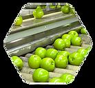 apples_hexagon.png