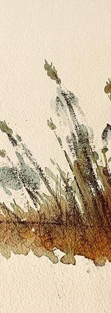 #egidiomarullo #germinale #acquerello