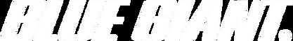 Rampas Niveladoras Blue Giant, Ganchos Retenedores Blue Giant, Refacciones para Rampas Niveladoras Blue Giant, Refacciones para Ganchos Retenedores Blue Giant, Ganchos de Retencion Blue Giant, Equipo de Muelle de Carga Blue Giant