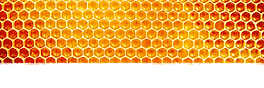 cad-honey-header-1800x600.png