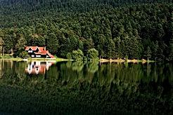 image-reflection-1865470_960_720.jpg