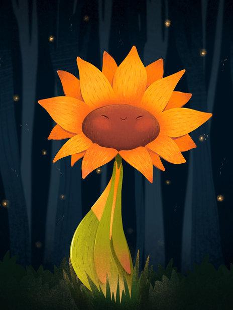 Sunflower in the Dark