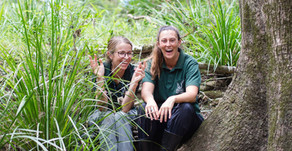 Wildlings Forest School Q&A