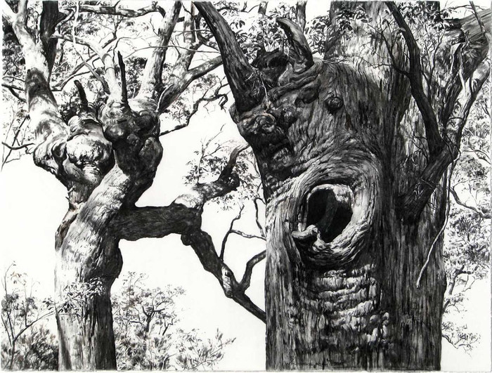 Painting Trees exhibition + meet the artist