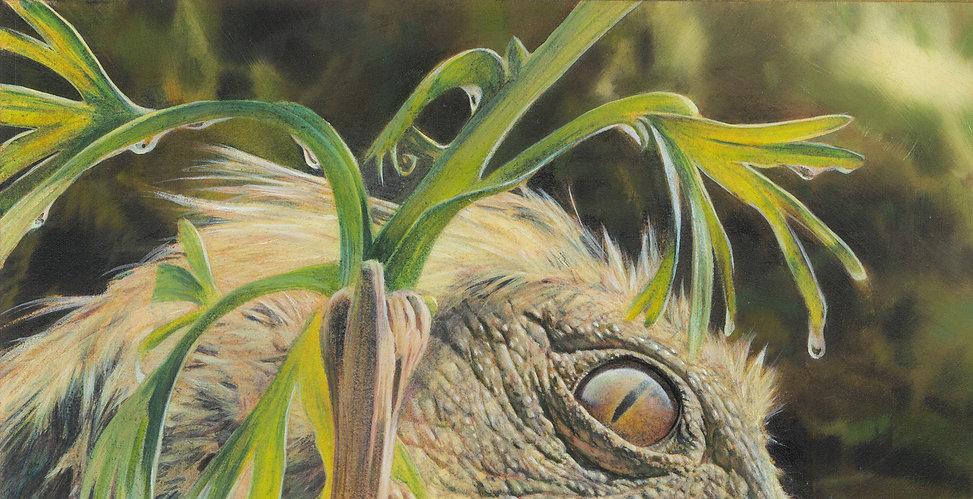Leallynasaura - detail 7-med res.jpg