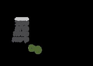 לוגו סטודיו9.png