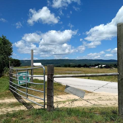 Entrance to Fentons Berry Farm.jpg
