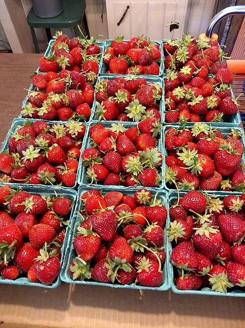 Strawberries, Quart(s), by PRE-ORDER ONLY