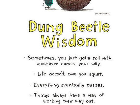 Are You Working Like a Dung Beetle?