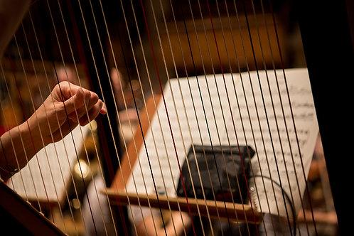 Harp Script for Logic Pro (FREE CUPOM!)