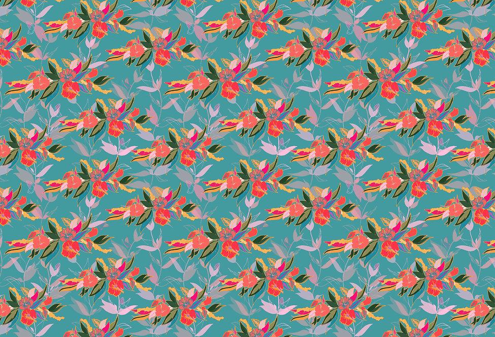 Wings of Hibiscus Hibiscus Summer JPG.jp