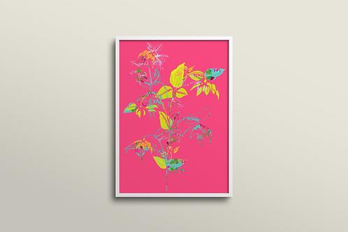 Fuchsia La Vine Art Print in Fuchsia Sun