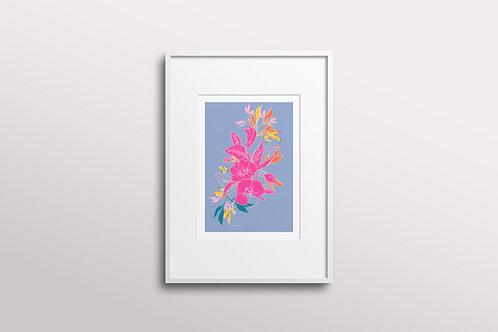 Hibiscus Flower Giclee Art Print, Lilac Sun