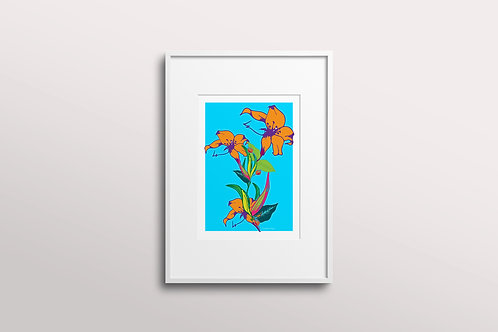 Fuchsia Lilly Art Print in Skylight Summer (Limited Edition)