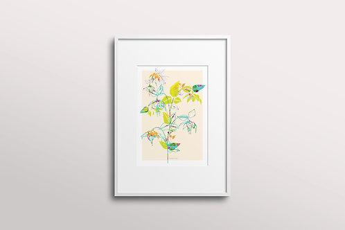 Fuchsia La Vine Giclee Art Print, Lemon Silk