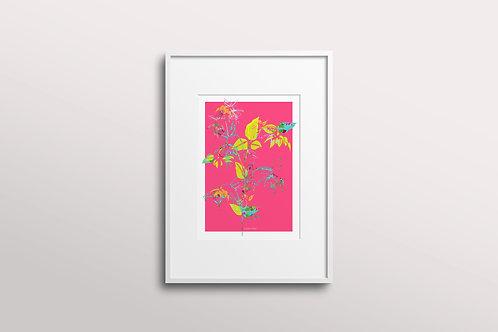 Fuchsia La Vine Giclee Art Print, Fuchsia Sun