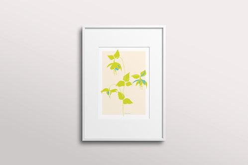 Fuchsia La Vine Bold Giclee Art Print, Lemon Mint