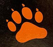 Tiger Paw.jpg