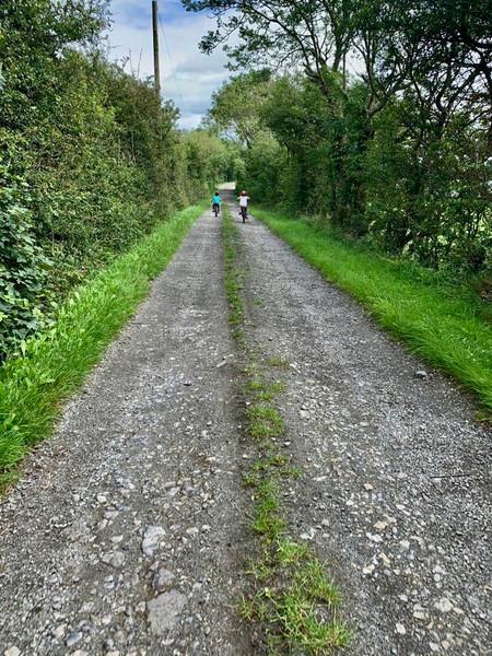 Down the lane....