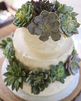 Succulent Cake 2.jpg