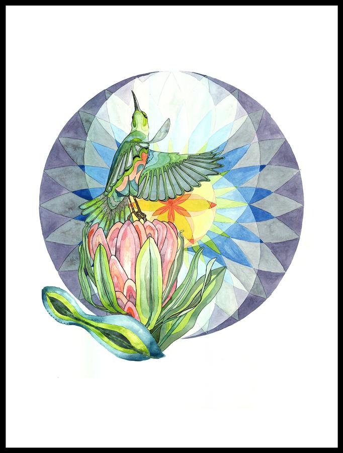 Sacred Sunbird