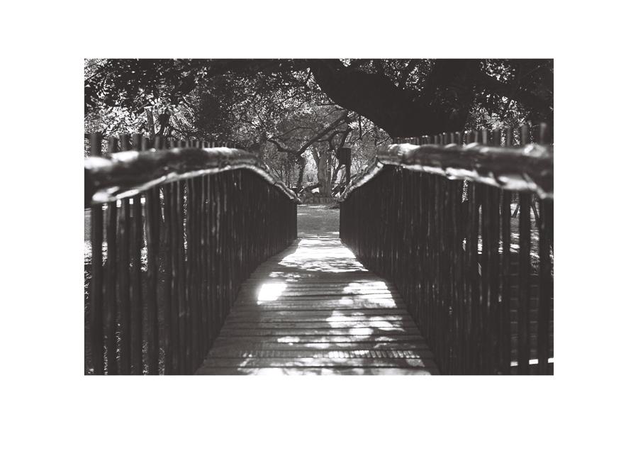 Bridging, Sabie Park 2016