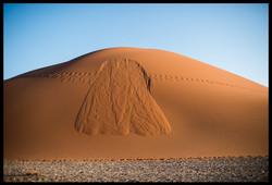Dune Puke