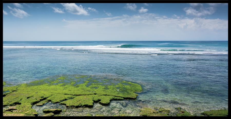 Shaka (Indonesia)