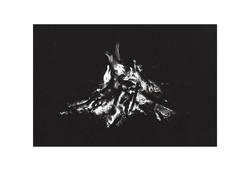 Fire Figures, Cederberg 2013