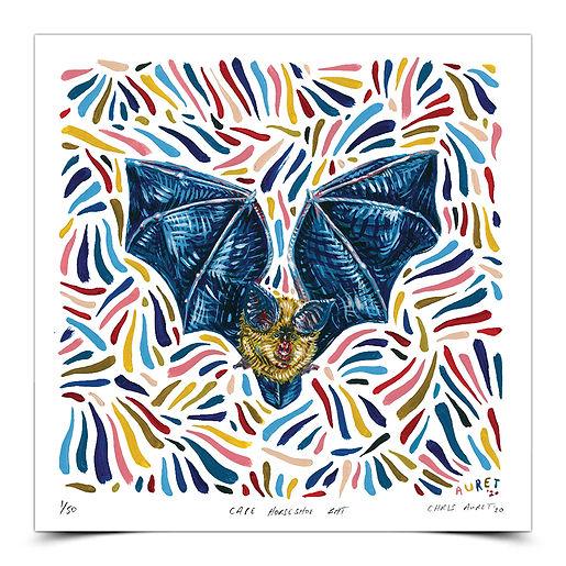 Cape Horseshoe Bat wt Shadow.jpg