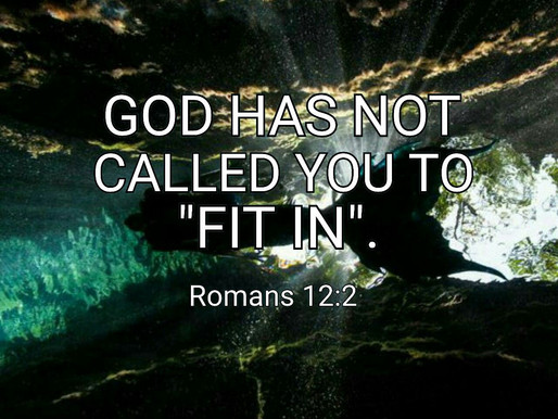 We're Not Called to Fit In