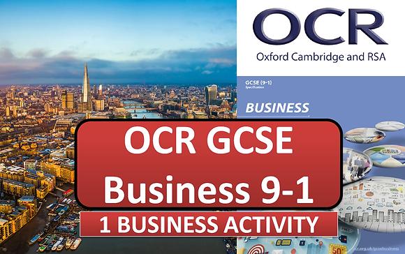 OCR GCSE Business - 1 Business activity