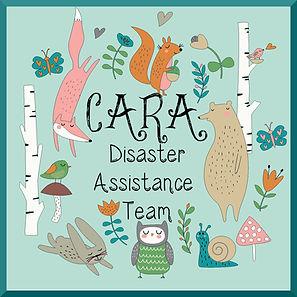 Disaster Team Logo.jpg