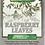 Thumbnail: Raspberry Leaves