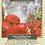 Thumbnail: Pomegranate Rosehip