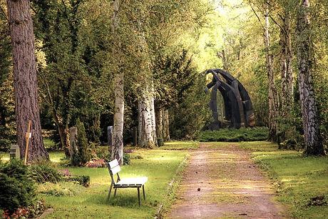 trees-in-park-257360_edited.jpg