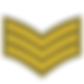 Army Sergeant Badge.png