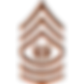 army-csm-rank-png-army-rank-e9-command-s