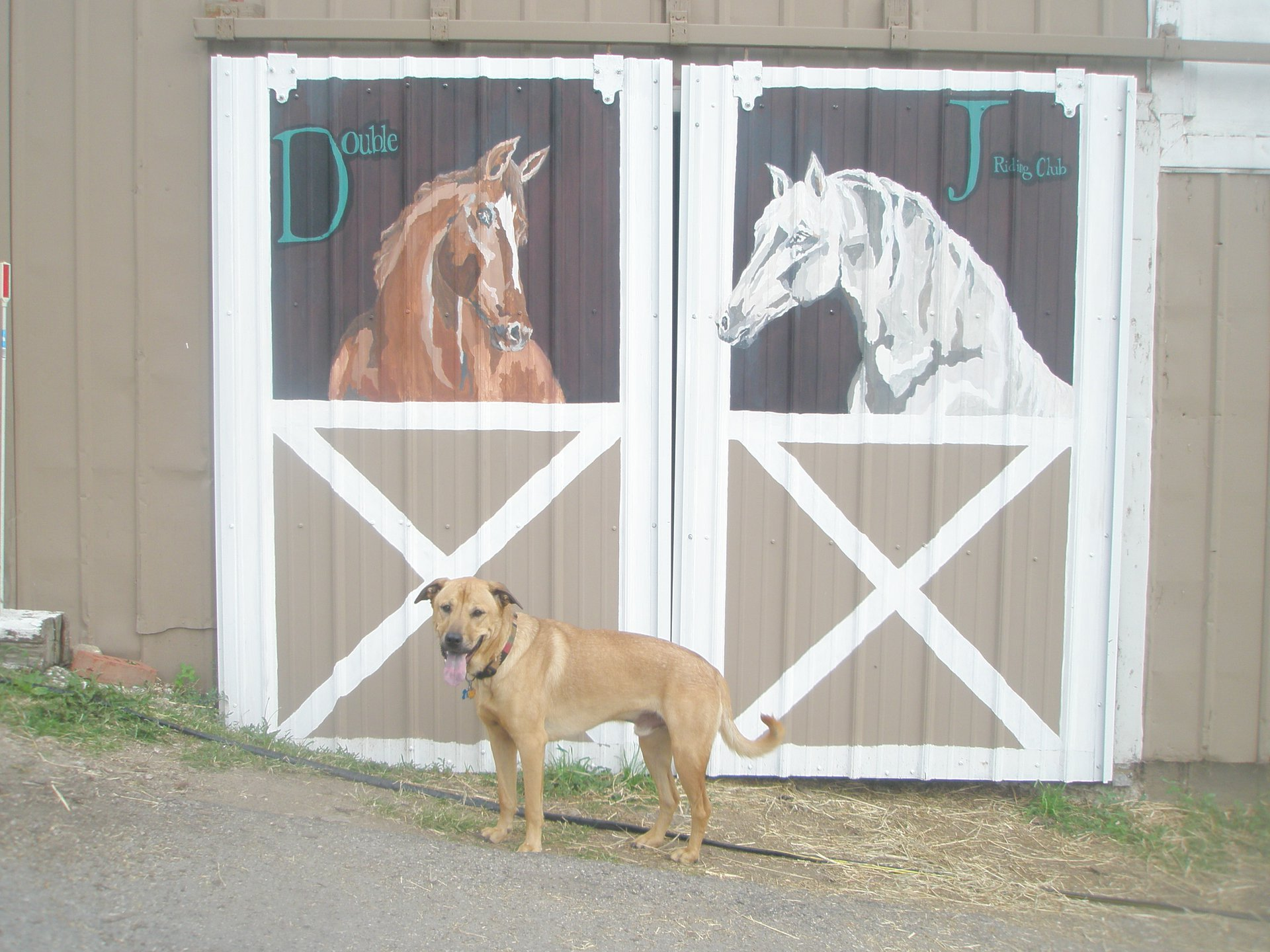 """Double J Riding Club"" mural"
