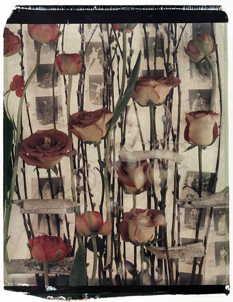 XVIII. River Bones and Roses