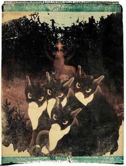 XXII. Four Wild Cats