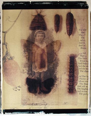 MothChild