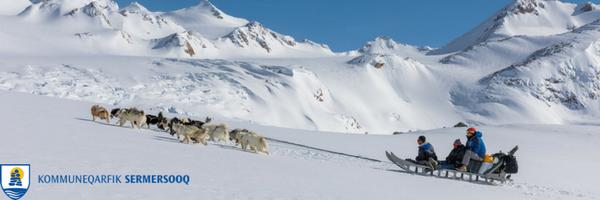 Mtool giver et køligt overblik for sermersooq kommune. Grønlandske slædehunde på tur.