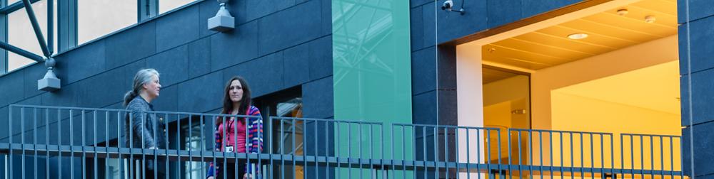 Many small and medium-sized businesses use dk hugbúnaður