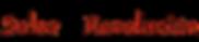 Logo-Salsa-Revolucion-Basel.png