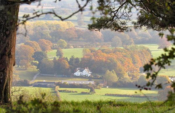 Lymore Farm.jpg