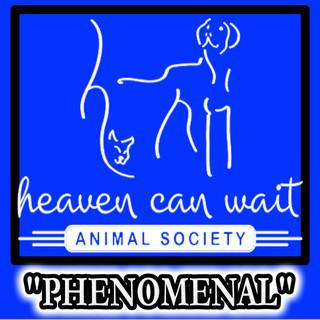 "HEAVEN CAN WAIT ANIMAL SOCIETY - LAS VEGAS - ""PHENOMENAL"""